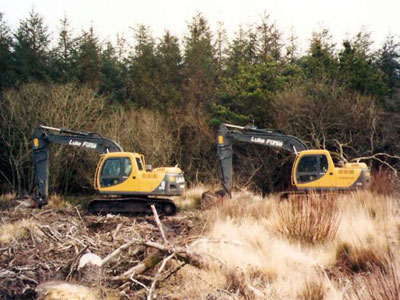 Forestry works being carried out by Luke Furse Earthmoving Ltd
