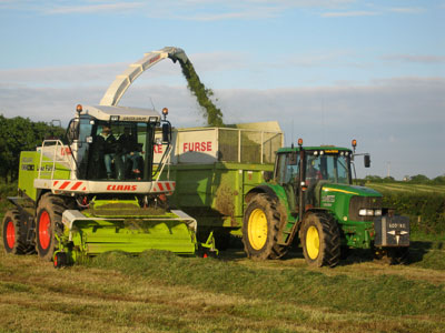 New Claas Jaguar 900 Forager in action